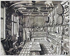 「驚異の部屋」の画像検索結果
