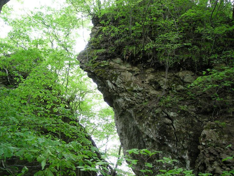 「旧噴火口の岩」
