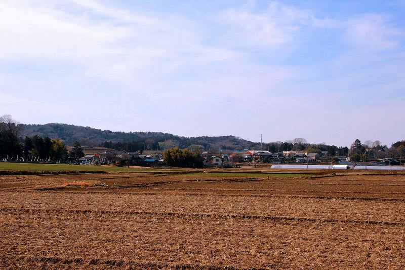 「益子町」のブログ記事一覧(2ページ目)-栃木の木々