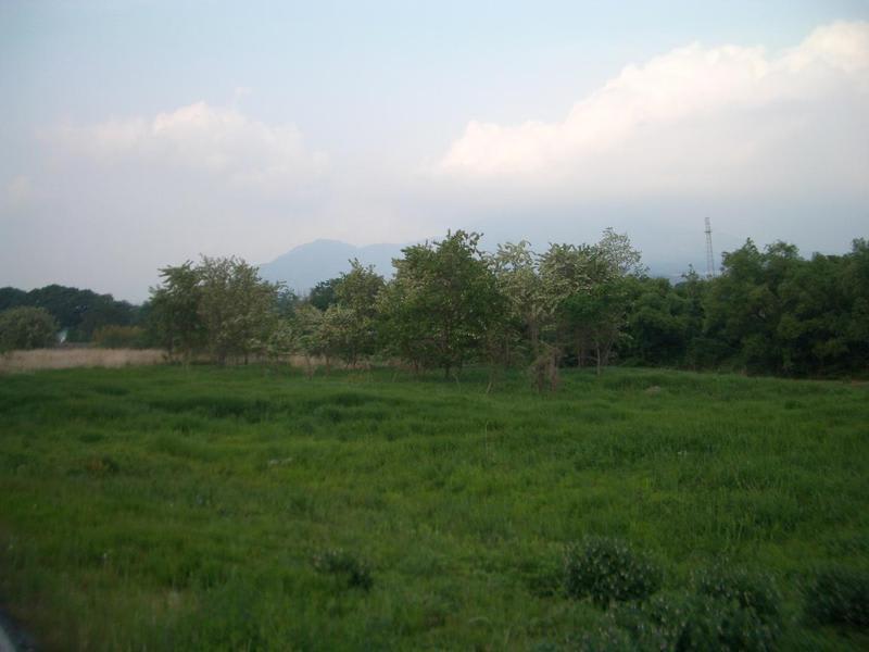 Kawa01