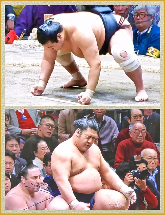 この無様(ぶざま)な大相撲力士の身体を篤とご覧(ろう)じろ ...