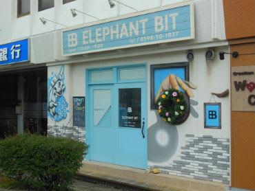 ����������� elephant bit����������� �����������gp