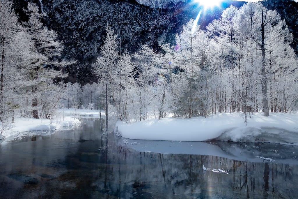 霧氷が付いた田代池の写真
