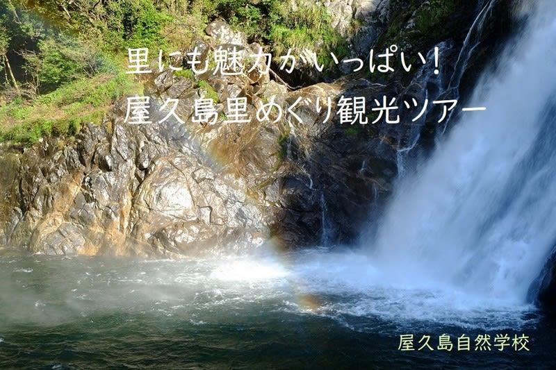 ツアー 屋久島 屋久島ツアー&屋久島旅行が激安! 屋久島と言えばオリオンツアー