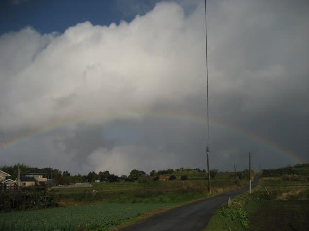 20091231a