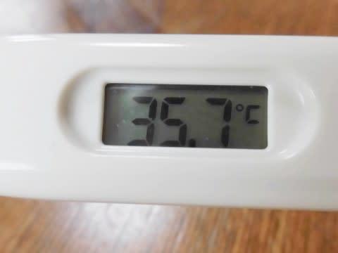 体温 はかる