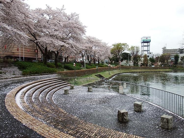 県 市 天気 東松山 埼玉