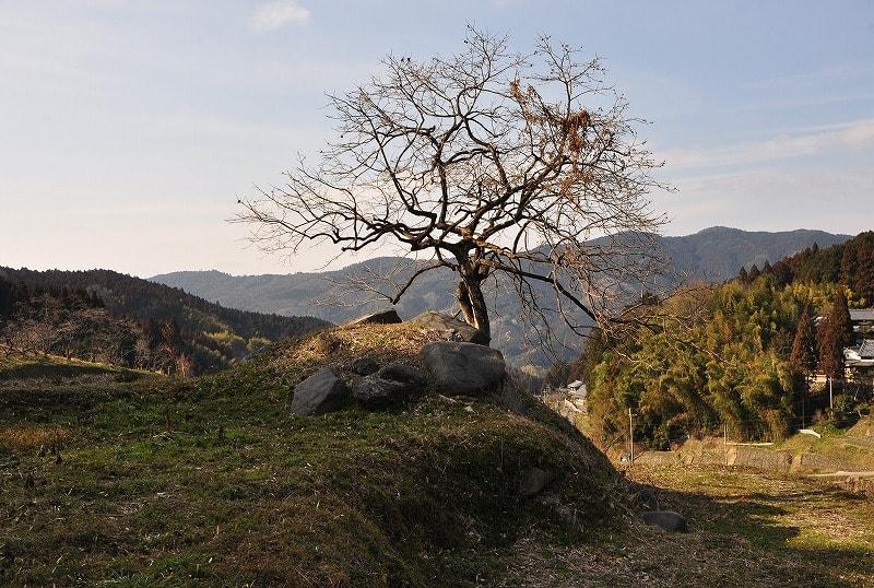 岩坂の古墳墳丘
