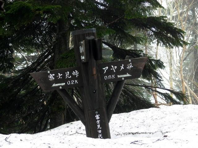 長沢道への分岐