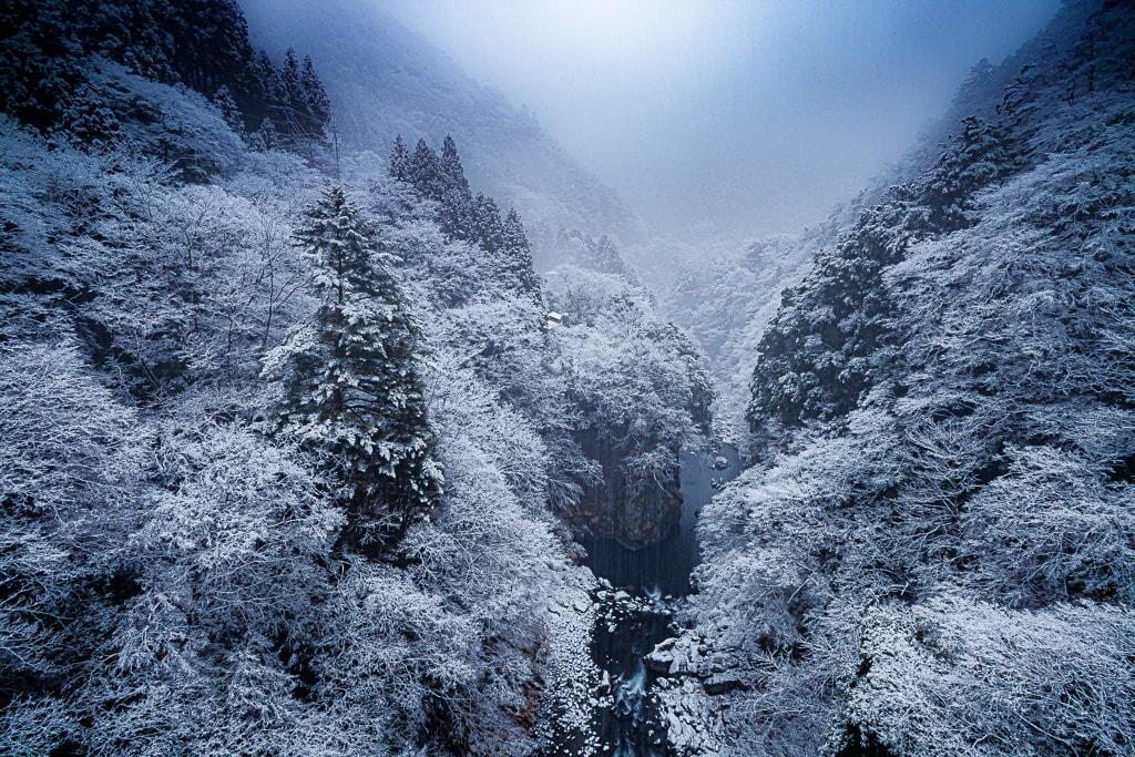 奥多摩の雪景色の写真