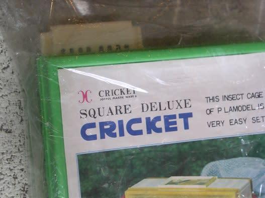 Square_deluxe_cricket