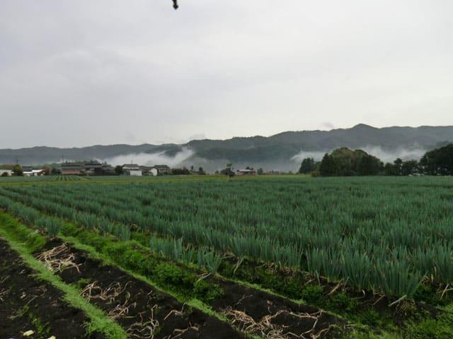 Tottori_04