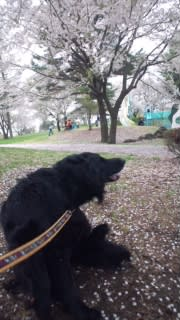 3日雪窓公園
