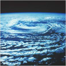 「「台風トカゲが接近」とかってなぜ言わない」の質問画像