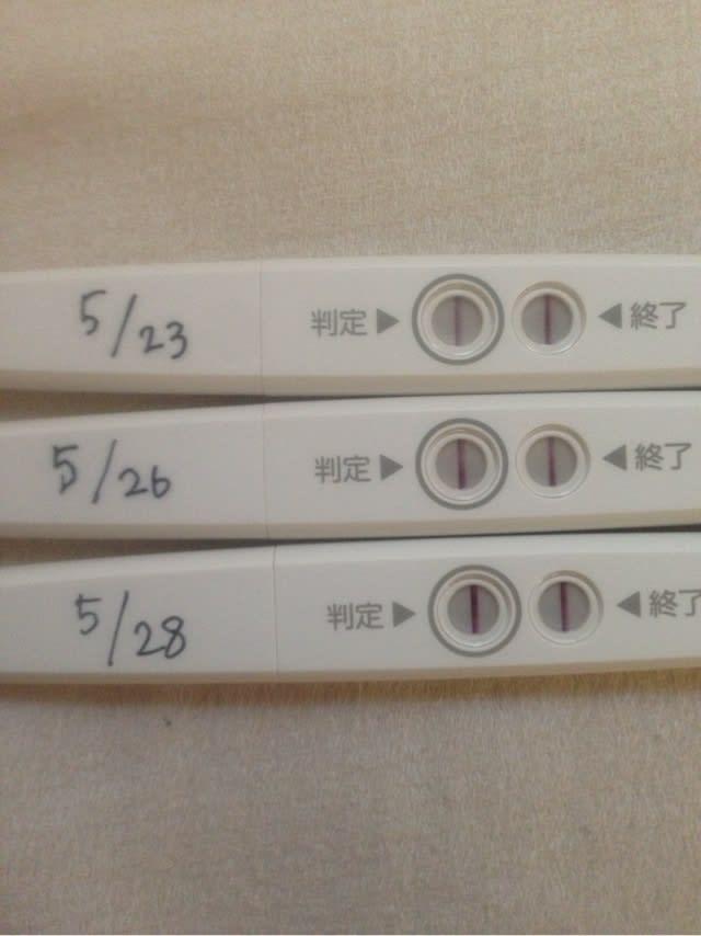 22日目 高温期 ★22周期目 D19