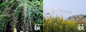 漢字を学び心を育む