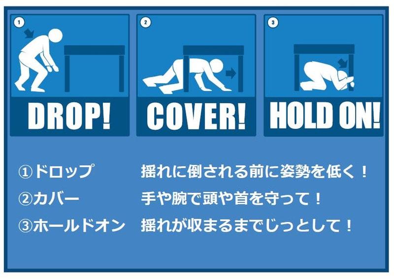 Dropcoverholdon_hokkaido_jpg1