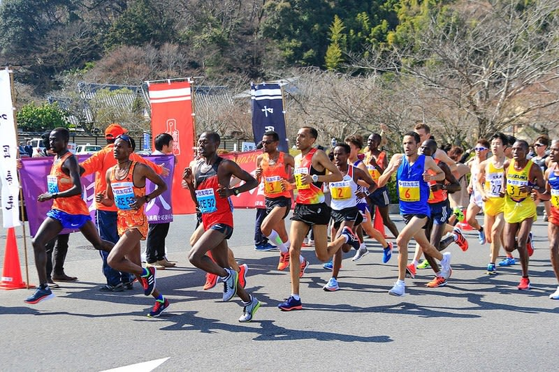 マラソン びわ湖 毎日