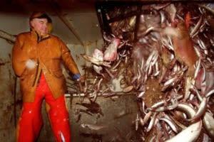 EU新共通漁業政策で仕事を失う 英国 - memories on the sea 海の記録