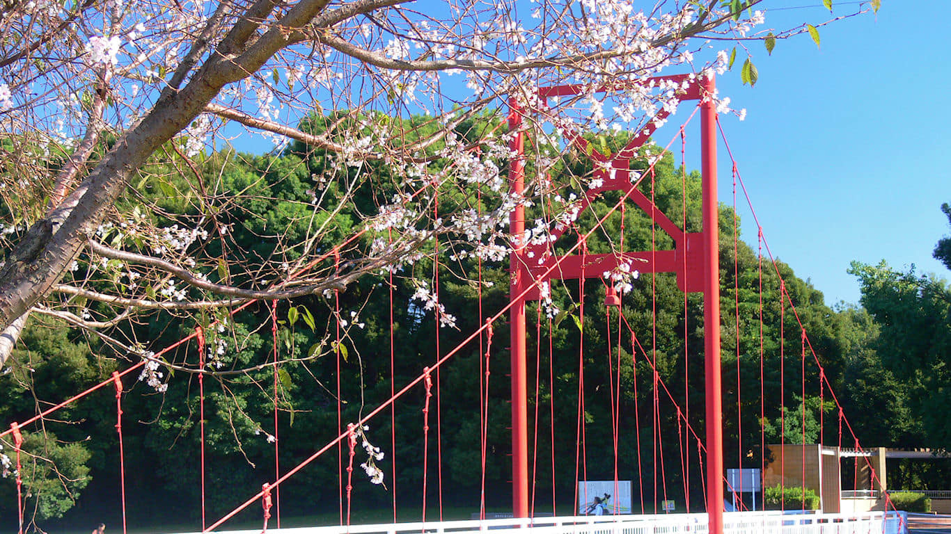 桜 だけど秋の風景 パソコンときめき応援団 壁紙写真館