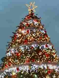 クリスマスでやんす!