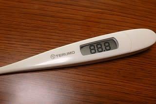 体温計 電池 交換 テルモ 電子