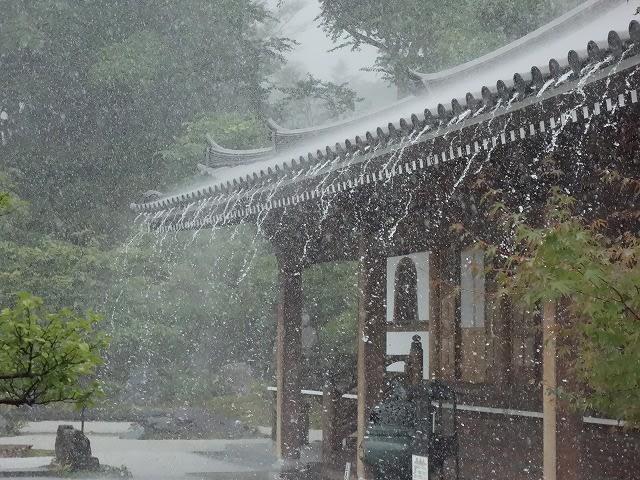 お寺に降る雨