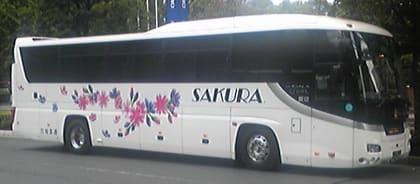 さくら 観光 バス