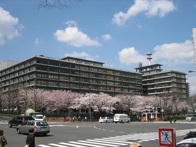 外務省の桜 ~再び~ - GAOの隠...