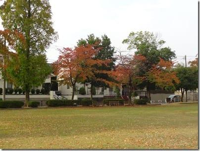 2015-10-24 (14)