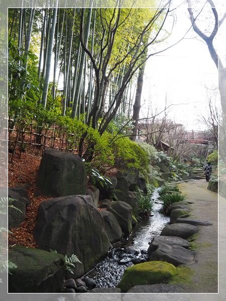 丈山苑(三河安城) - 里葉の散歩