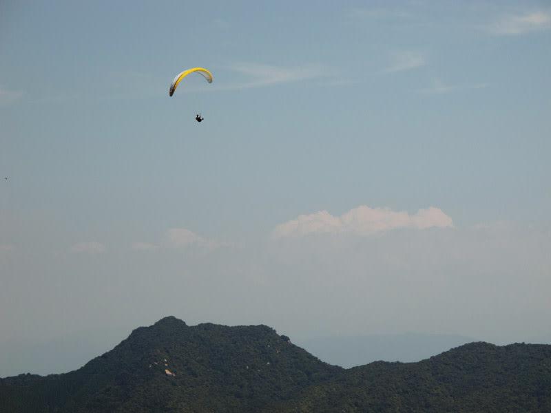 Flying_high_web