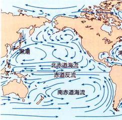 北太平洋_北太平洋海流 - ブナの中庭で