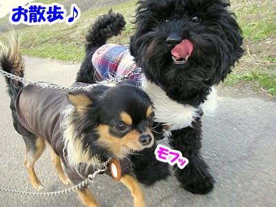 https://blogimg.goo.ne.jp/user_image/0a/7f/e898fff812a45b4e8cce84436be8234f.jpg