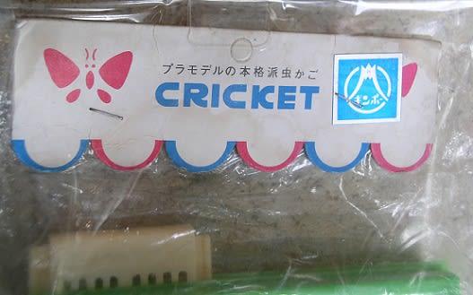 Cricket_top