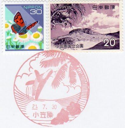 Ogasawara090730013