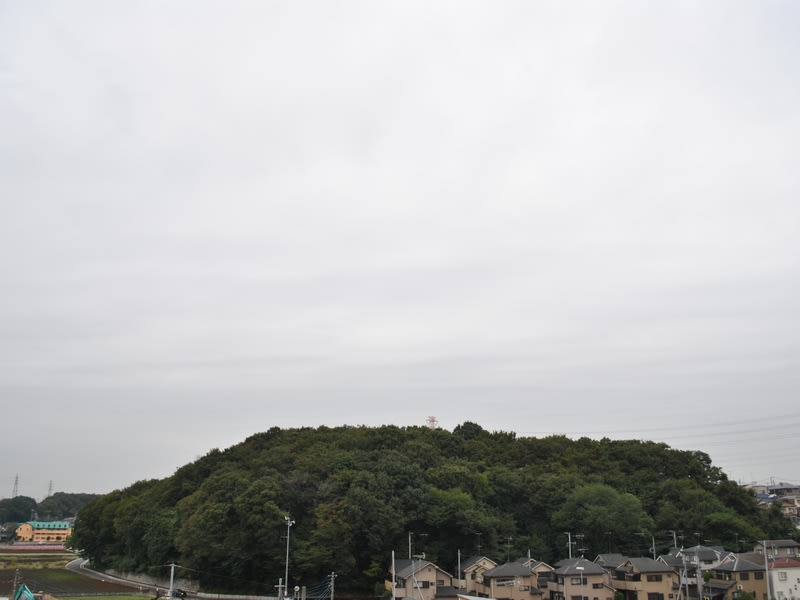 10月28日 朝の根岸台
