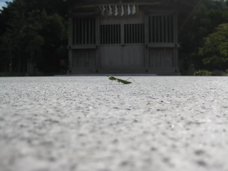 Kyushu_076