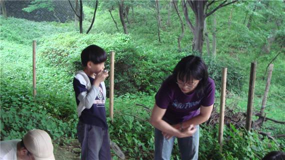 さえずりの森 看板製作4