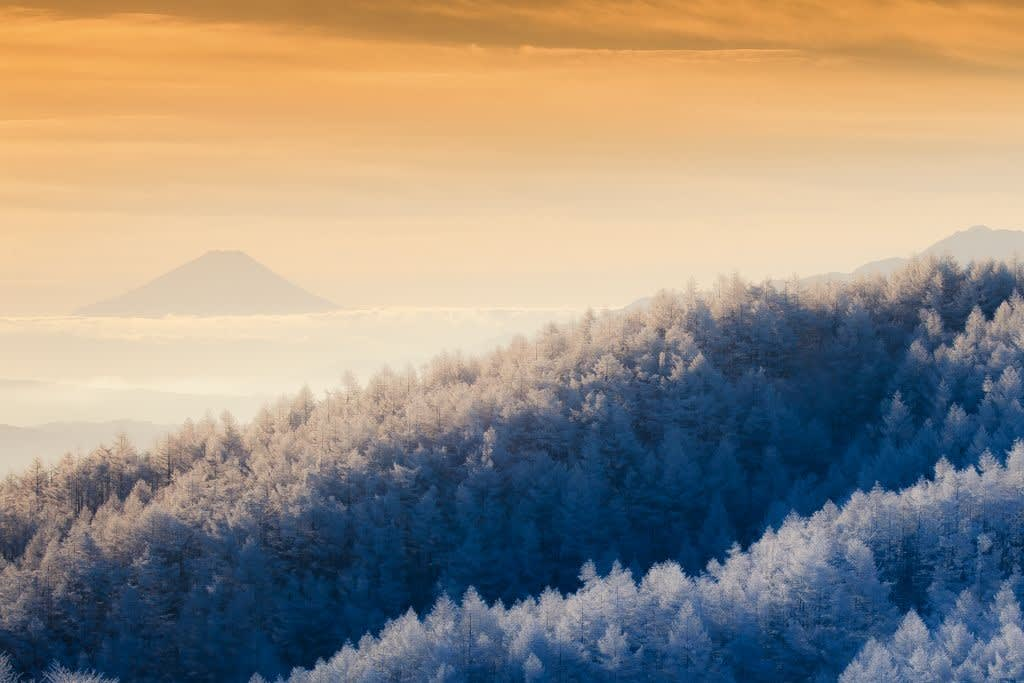 富士と霧氷の写真