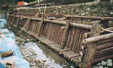 コンクリートの護岸工事は、強度や耐久性の意味では合理的です。しかし、そこに小動物や、小魚が棲むことはできません