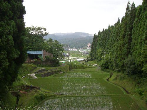 田能盆地の有名な景色です。
