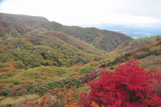 鍋谷の紅葉