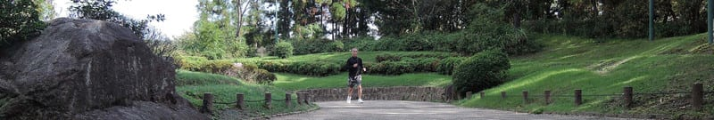 Jackie_jogging_in_a_forest_park