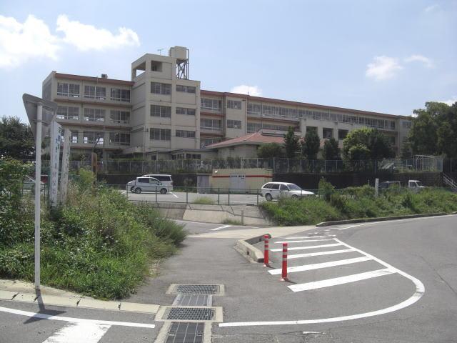 荒川義広の墓 西尾市 - 愛知の史...