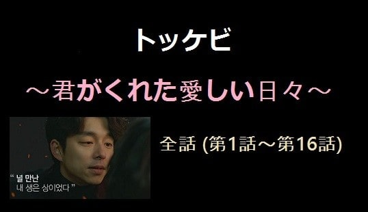 トッケビ 全話一覧 第1話第16話日本語字幕 無料視聴動画 韓流