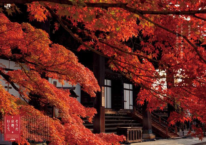 2019秋そうだ京都、行こう 真如堂、金戒光明寺 - 京都で定年後生活