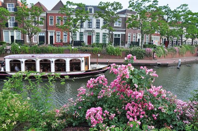 バラと運河