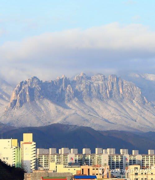 「蔚山岩画像」の画像検索結果