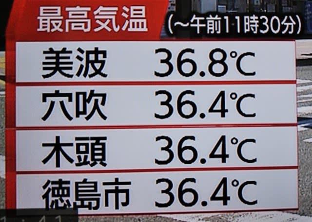 最高 今日 気温 の
